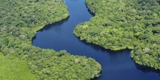 O cultivo da soja como ameaça para o meio ambiente na Amazônia brasileira