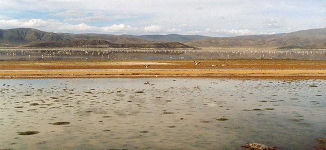 Evaluación de la gestión socio-ambiental del sector minero en Bolivia