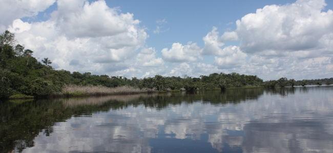 Los derechos de la naturaleza después de la caída de la moratoria petrolera en la Amazonia