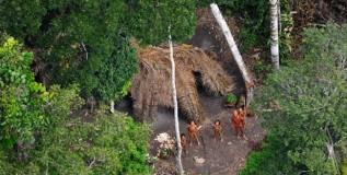 Bolivia: exploración petrolera en la Amazonía reporta la presencia de indígenas no contactados