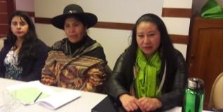 Extractivismos, desarrollo, mujeres: Bolivia