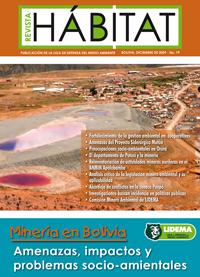 MineriaBoliviaLIDEMA09