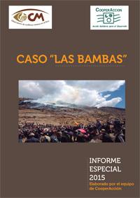 CasoLasBambasInforme2015a