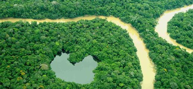 Minería, ambiente y territorios indígenas en Amazonia de Colombia